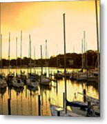Oak Point Harbor Metal Print