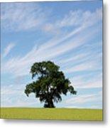 Oak Tree Landscape Metal Print