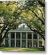 Oak Trees In Front Of A Mansion, Oak Metal Print