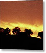 Oaks On Hill At Sunset Metal Print