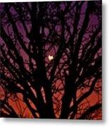 Ocala Moonrise Metal Print