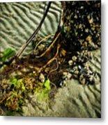 Ocean Bouquet Metal Print