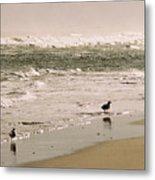 Ocean Edge Metal Print