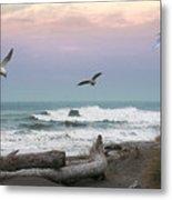 Ocean Shores O1074 Metal Print