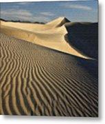 Oceano Dunes Metal Print