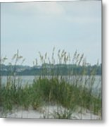 Oceanview Through Seaoats Metal Print