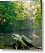 Oconaluftee River. Metal Print