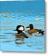 Odd Couple Metal Print