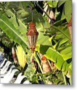 Of Lanterns And Lawn Chairs Metal Print