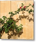 Of Light And Shadow - Bougainvillea On A Timeworn Plaster Wall Metal Print