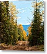 Off The Alaska Highway Metal Print