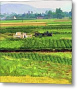 Off The Beaten Track Vietnam Viewed Through Train Window Filters  Metal Print