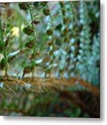 Office Art Fern Green Forest Ferns Giclee Prints Baslee Troutman Metal Print