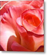 Office Art Pink Rose Spiral Roses Giclee Prints Baslee Troutman Metal Print