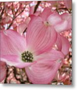 Office Art Prints Pink Flowering Dogwood Tree 1 Giclee Prints Baslee Troutman Metal Print