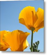 Office Art Prints Poppies Poppy Flowers Blue Skies Giclee Baslee Metal Print