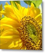 Office Art Sunflowers Giclee Art Prints Sun Flowers Baslee Troutman Metal Print