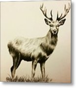 Oh Deer  Metal Print