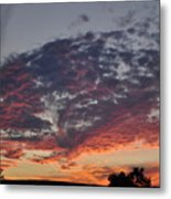 Oh The Colors Metal Print