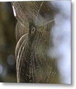 Oh What Webs We Weave Metal Print