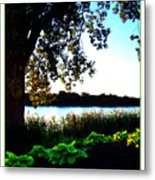 Ohio Pond Metal Print