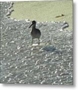 Standing In The Wave Metal Print