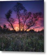 Ojibway Sunset Metal Print