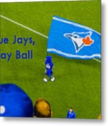 O.k. Blue Jays Let's Play Ball Metal Print