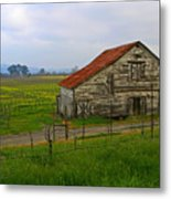Old Barn In The Mustard Fields Metal Print