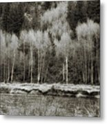 Old Country Metal Print