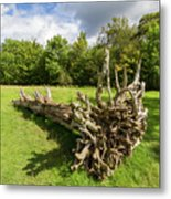 Old Cut Tree On A Meadow Metal Print