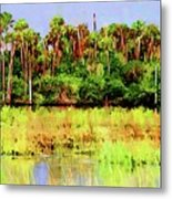 Old Florida Loop Palms Metal Print