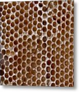 Old Honey Comb Bee Hive  Metal Print