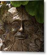Old Man In The Garden Metal Print