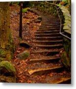 Old Man's Stairs Metal Print