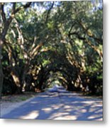 Old Oak Tunnel Metal Print