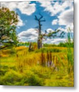 Old Oaks Painterly.  Metal Print