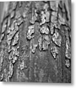 Old Paint Metal Print