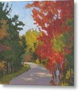 Old Scoolhouse Road Fall - Art By Bill Tomsa Metal Print