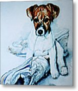 Old Shoe Pup Metal Print