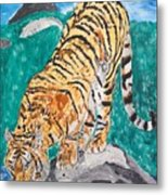 Old Tiger Drinking Metal Print