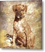 Old Time Boxer Portrait Metal Print by Angie Tirado