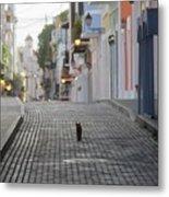 Old Town Alley Cat Metal Print