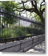 Old Tree And Ornate Fence Metal Print