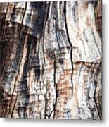 Old Tree Stump Tree Without Bark Metal Print