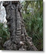 Old Trunk In The Swamp Metal Print