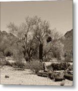 Old Tucson Landscape  Metal Print