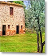 Old Villa And Olive Trees Metal Print