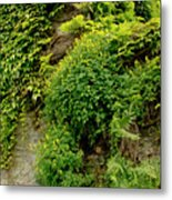 Old Walls Rising From The Water Edge. Metal Print