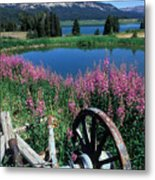 Old Wheel And Brooks Lake Metal Print by Kathy Yates